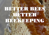 Better Bees Better Beekeepers